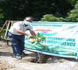 Tree Plantation by Addl.Manager -P&A-MFL (2)