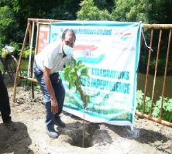 Tree Plantation by Addl.Manager -P&A-MFL