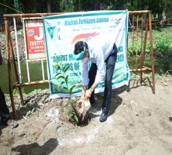 Tree Plantation by CVO- MFL