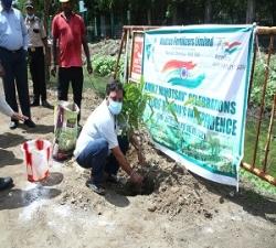 Tree Plantation by DGM-IA,CT&MIS -MFL