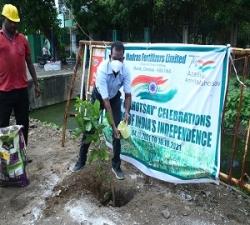 Tree Plantation by DGM-Maint -MFL (2)