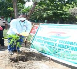 Tree Plantation by DGM-Prodn -MFL (3)