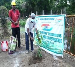 Tree Plantation by DGM- Tech-Service -MFL (2)